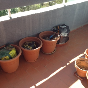 Sector B. Balcón comestible de Patricia