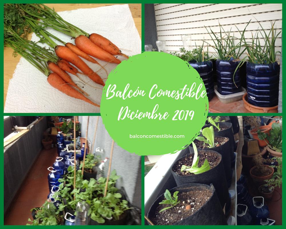 BALCON COMESTIBLE DICIEMBRE 2019